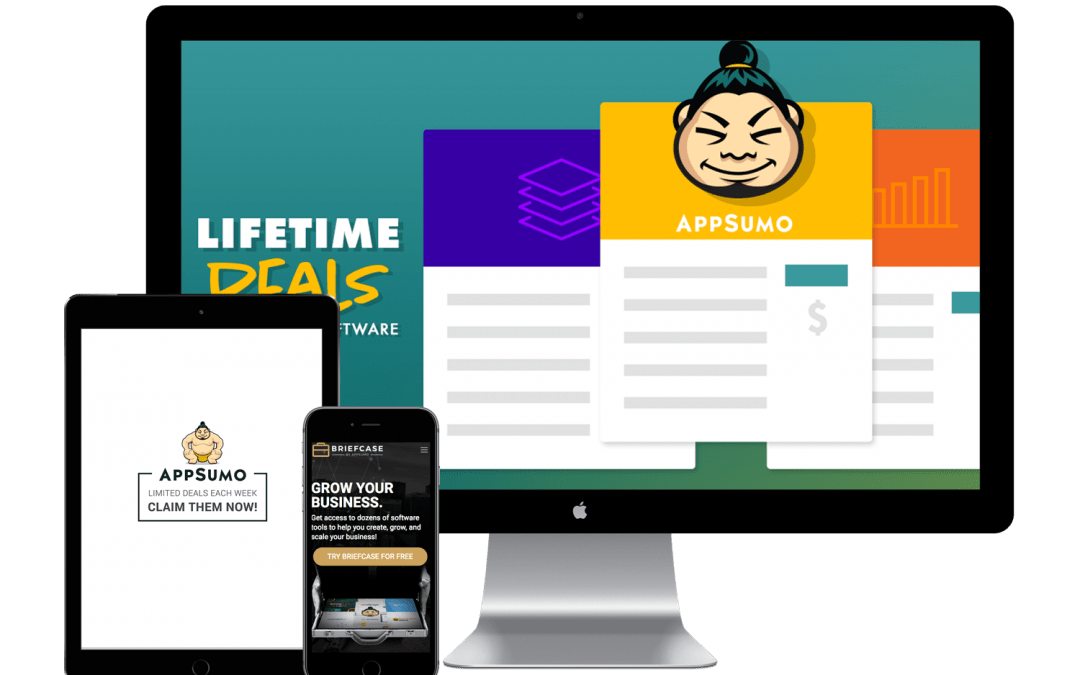 AppSumo – Paid Acquisition Growth